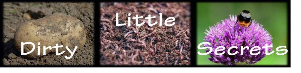 Whole Soil Revolution - Soil is Life