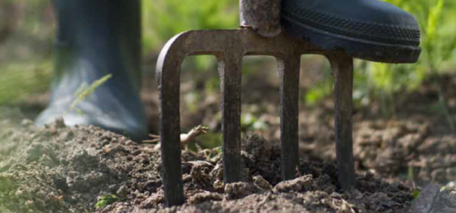 Down and Dirty on Demand Soil Plans